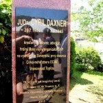 Daxner8